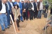 وزارة الشباب و الرياضة تحتفل بالعيد الوطني للشجرة