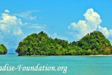ذي بارادايس فاونديشن تطلق أول برنامج خارجي للحفاظ على الطبيعة في أفريقيا