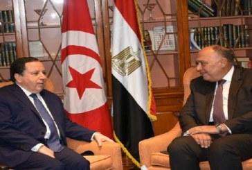 وزير الخارجية يلتقي في القاهرة كلا من نظيره المصري وأمين عام جامعة الدول العربية